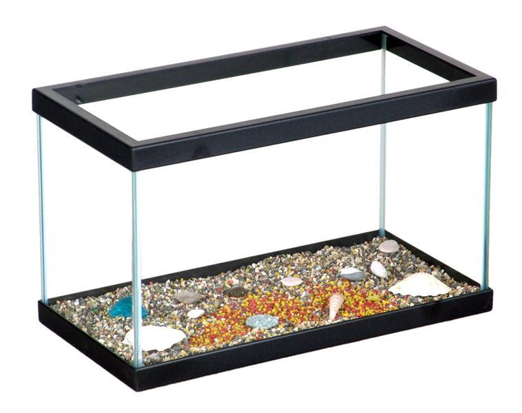 Acquario azzurra acquario in vetro per pesci d 39 acqua for Acquario per tartarughe piccole