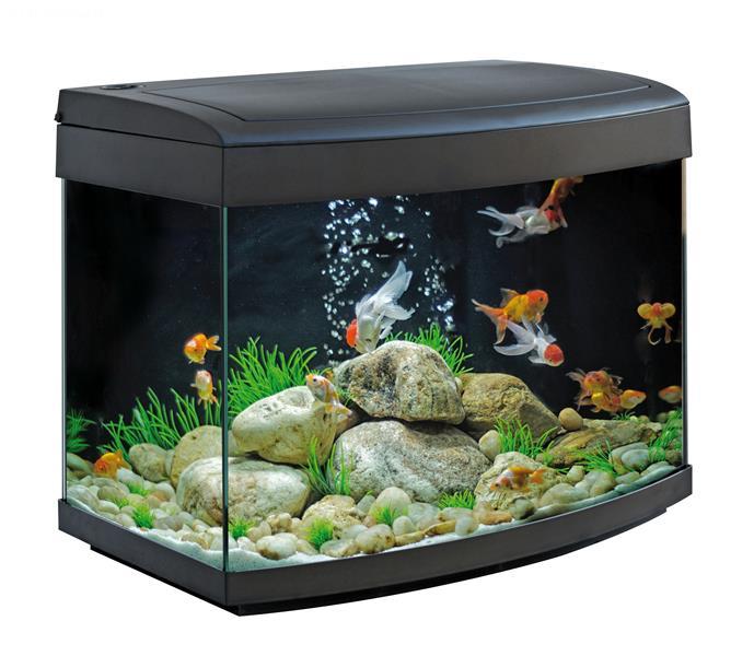 Milo 45 R Vision Aquarium
