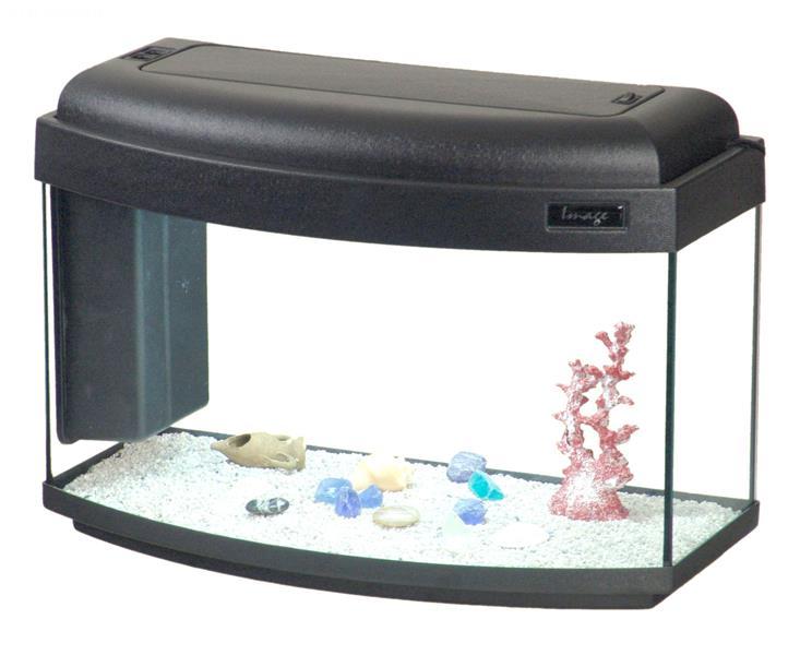 Acquario image 60 60x30 acquario con vetro frontale for Acquario angolare