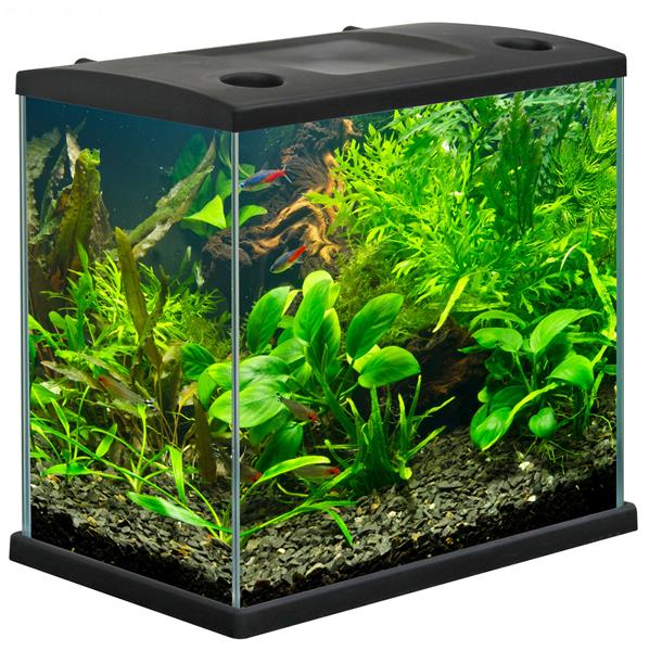 acquario cleo plus acquario in vetro completo di