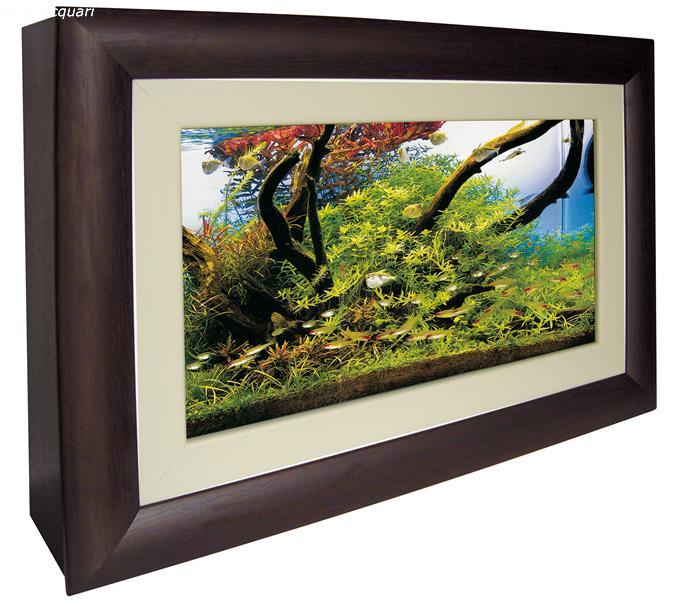 acquario quadro wall aquarium acquario in vetro da parete