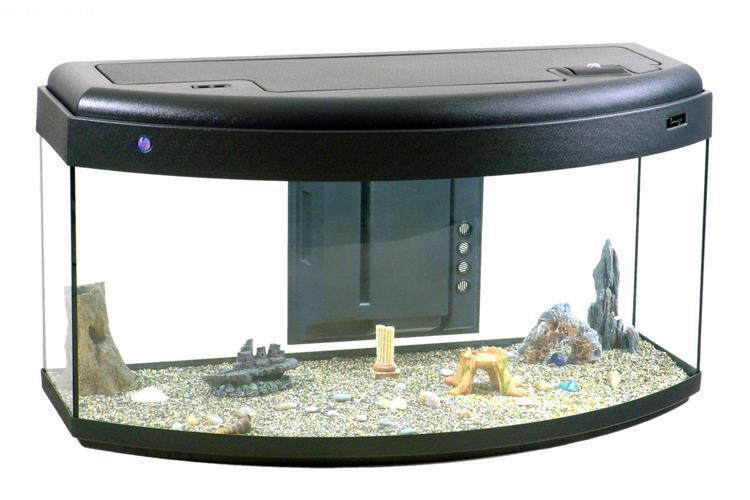 Acquario image 120 116x55 acquario con vetro curvo frontale completo di coperchio plastico - Acquario x casa ...