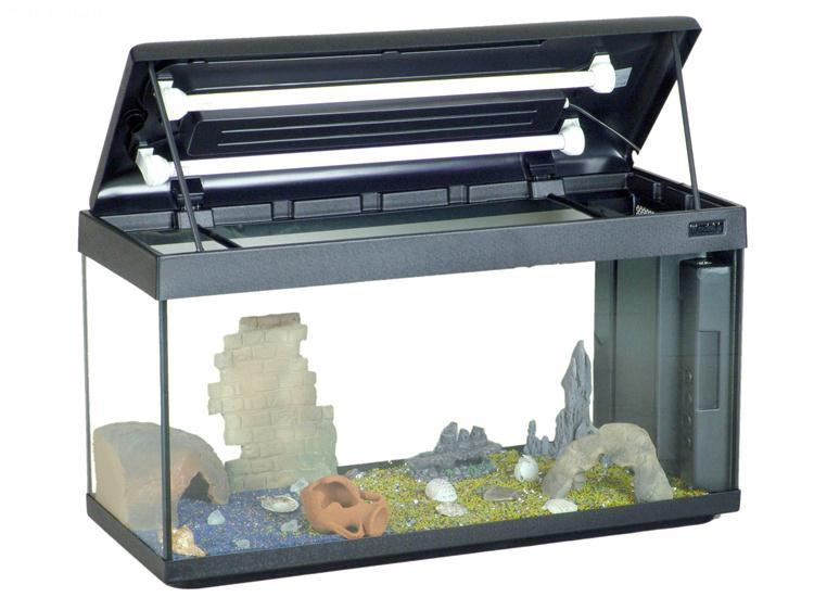 Aquarium mondolife 100 100x40 aquarium en verre muni d for Aquarium plastique
