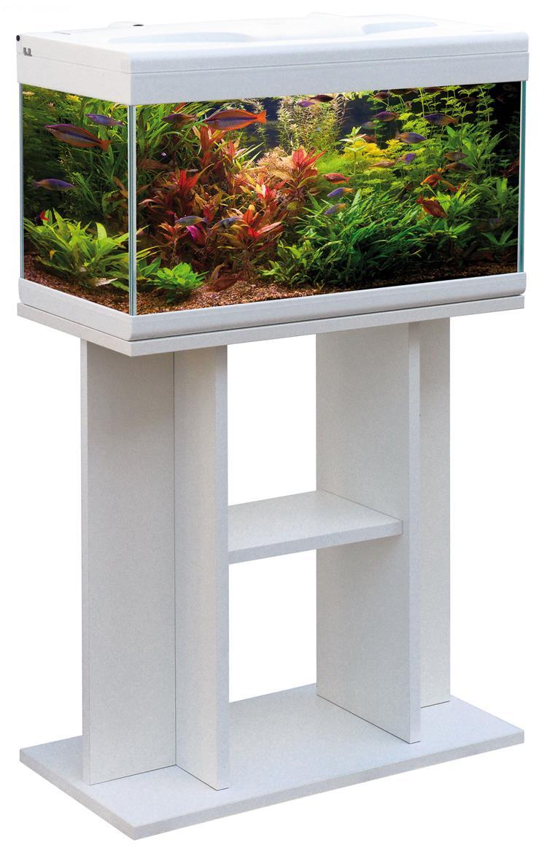 acquario aloha 60 (60x30), acquario in vetro completo di coperchio