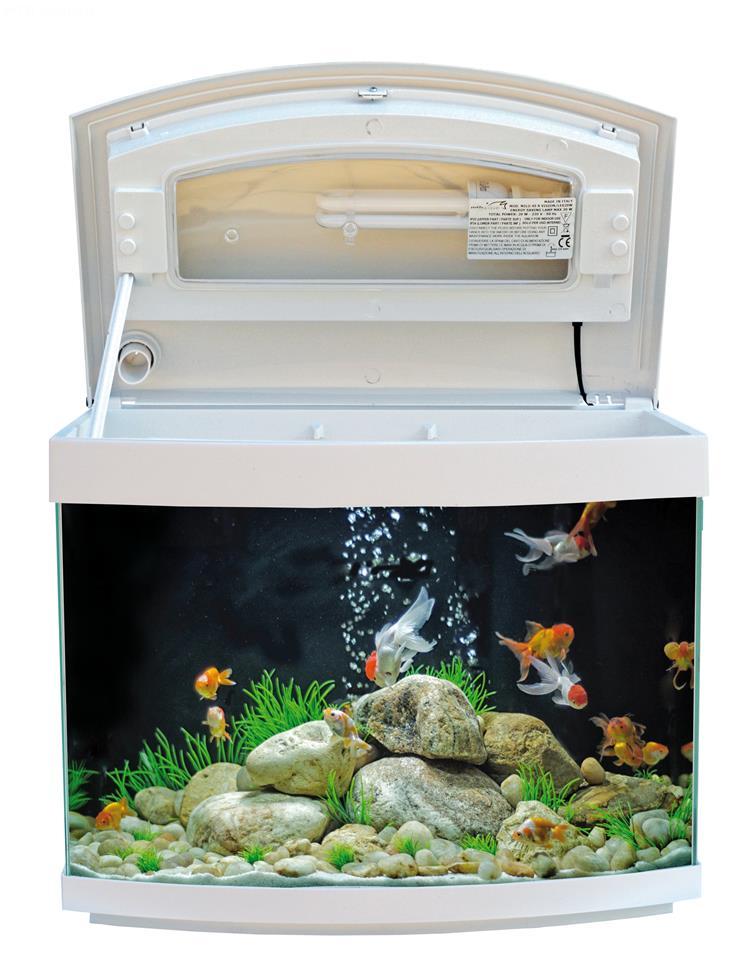 Acquario milo 45 r vision acquario con vetro curvo for Acquario aperto