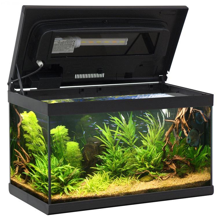 Aquarium aloha 60 60x30 aquarium en verre muni d 39 un for Lampada acquario
