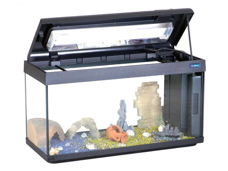 Coperchio acquario 100x40 casamia idea di immagine for Acquario aperto prezzi