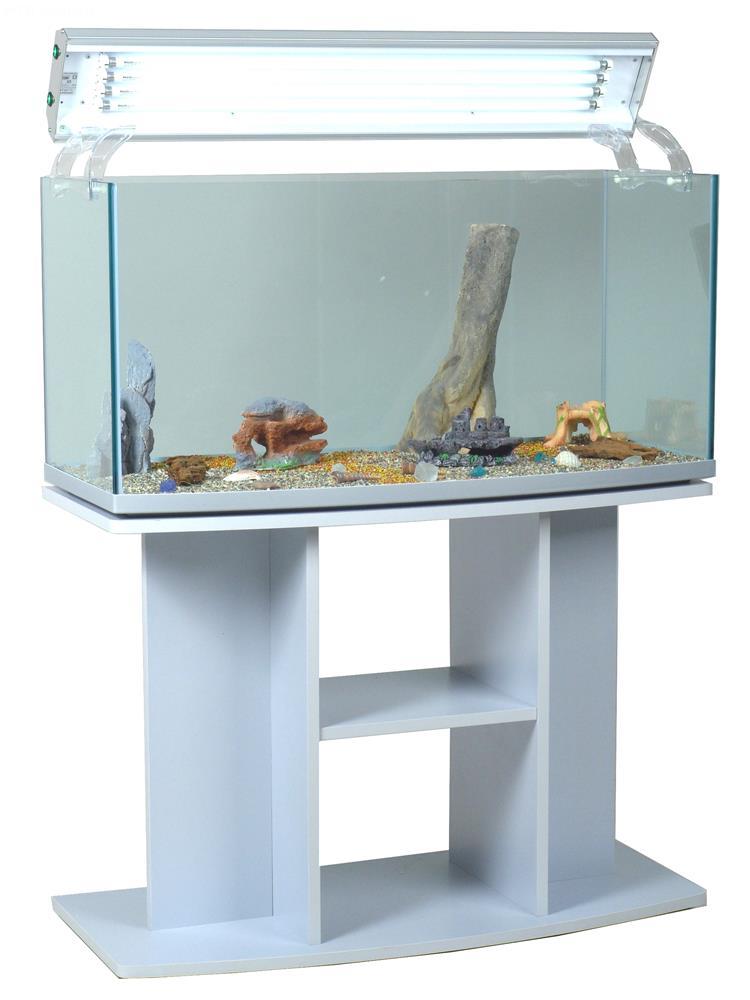 Acquario open image acquario aperto con vetro frontale for Acquario completo prezzi