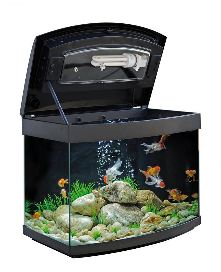 Acquario milo 45 r vision acquario con vetro curvo for Lampada acquario