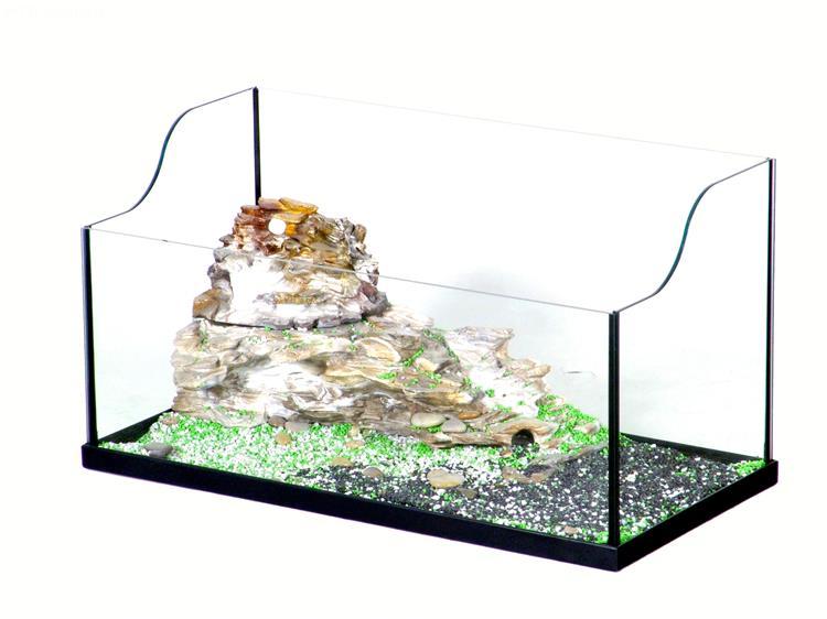 tartarughiera calypso tartarughiera calypso in vetro la