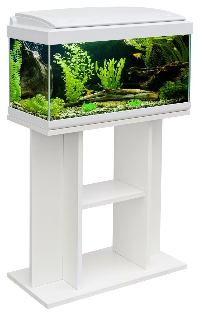 Acquario milo 60 60x30 acquario in vetro completo di for Acquario bianco usato