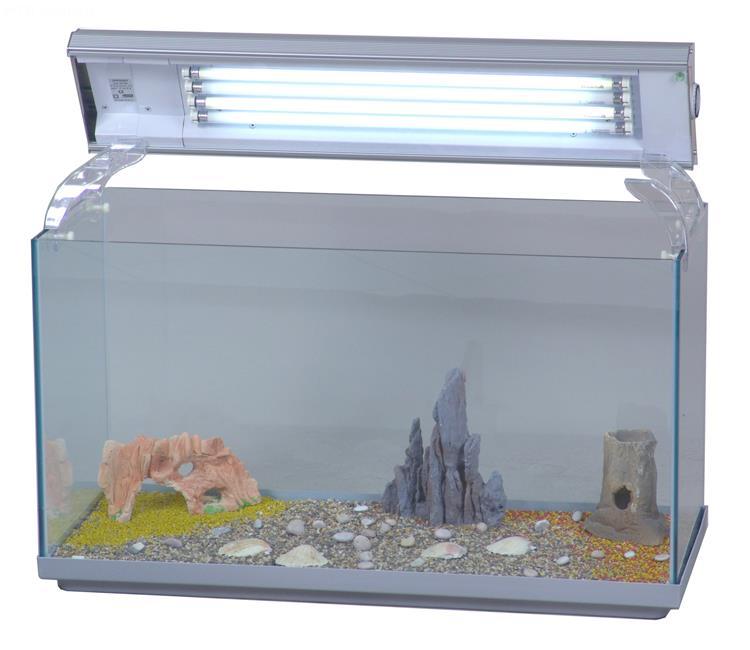 Acquario linea open acquario aperto in vetro completo for Acquario aperto prezzi